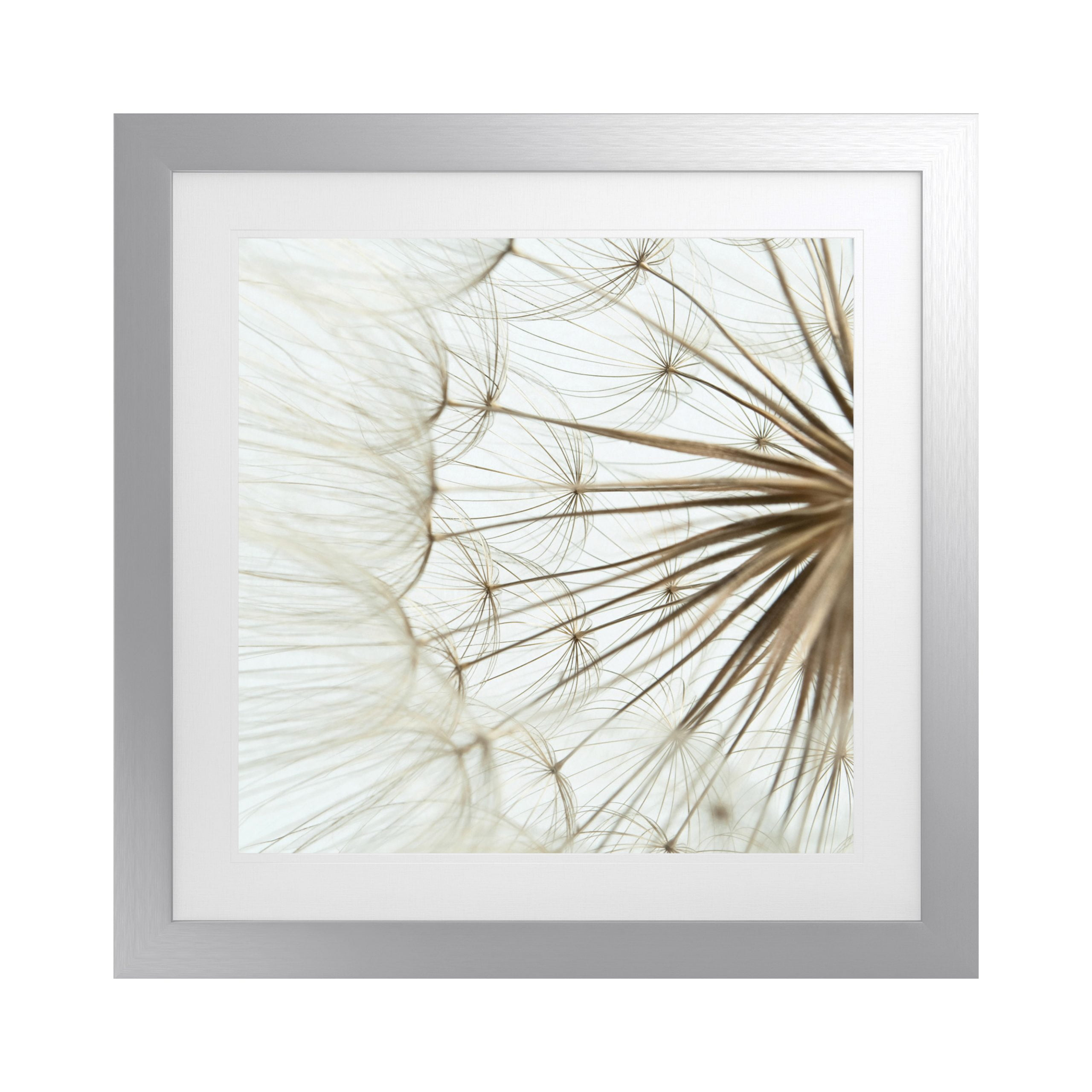Wisp Artwork with Fornari Silver Frame